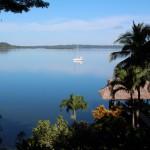 Dolphin Bay - Bocas del Toro
