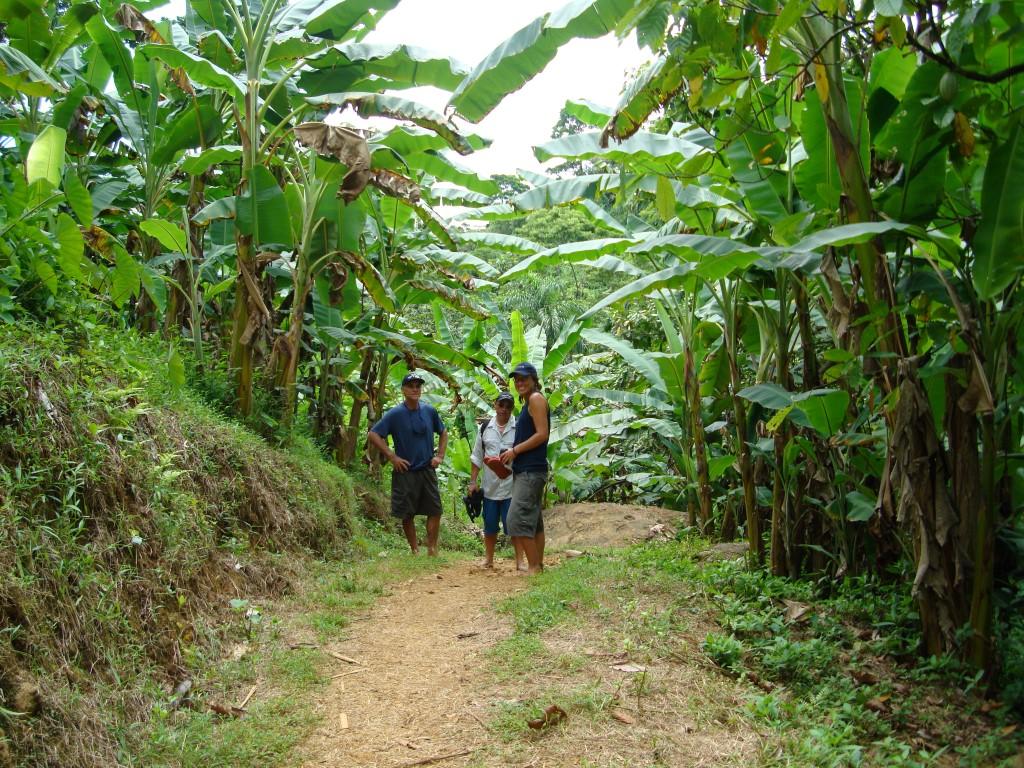 Wandern - Trekking - Natur - Bocas del Toro